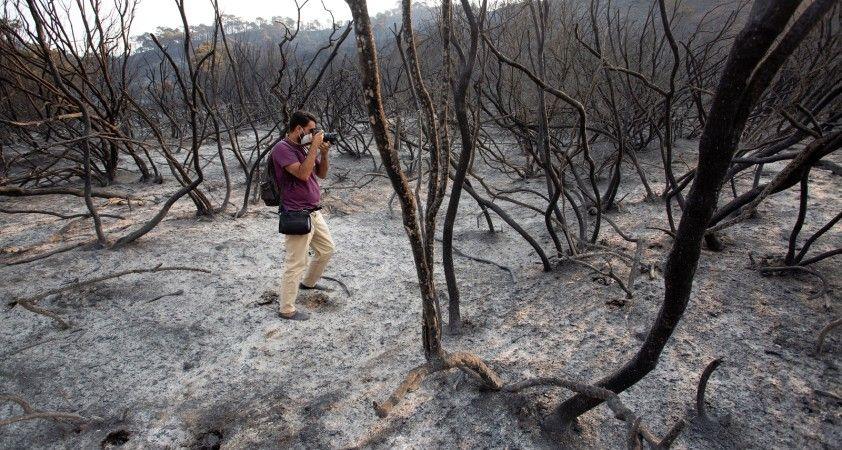İspanya'nın güneyi 5 gündür alev alev yanıyor