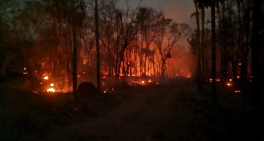 Bolivya'da orman yangınları: 280 bin hektarlık alan küle döndü