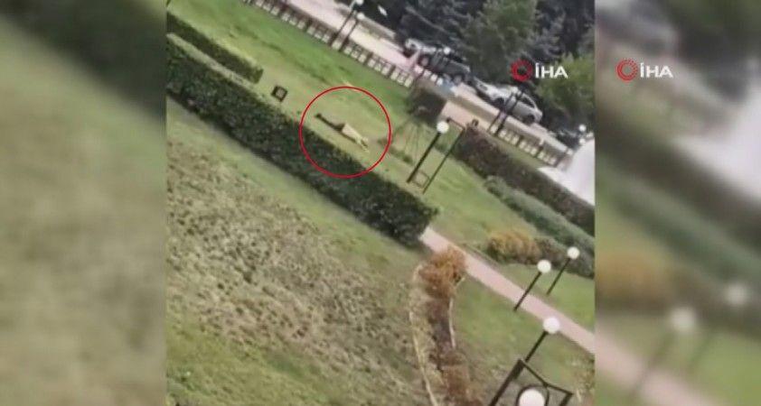 Rusya'da üniversiteye silahlı saldırıda bilanço yükseliyor: 8 ölü, 14 yaralı