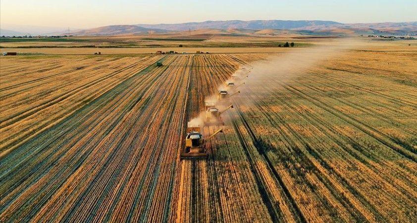 Devlet destekli tarım sigortalarında toplam sigorta bedeli arttı