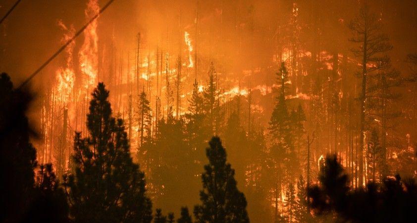 California'daki Caldor yangını 34 binden fazla yapıyı tehdit ediyor