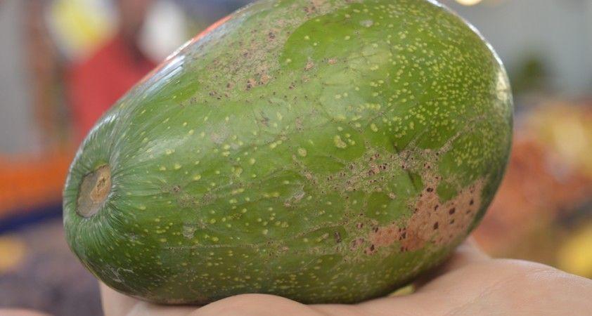 Vitamin deposu avokadonun fiyatı ateş pahası