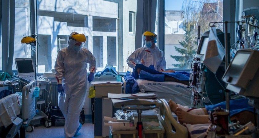 Almanya'da son 24 saatte korona virüsten 226 ölüm
