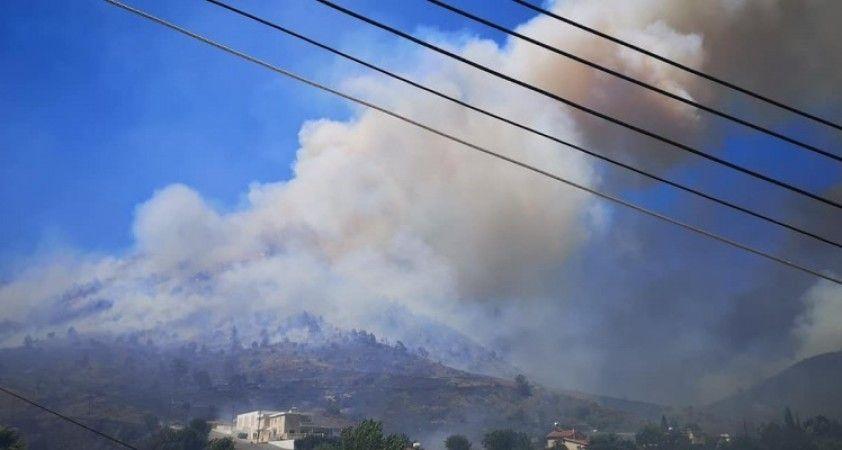 Güney Kıbrıs'ta yangın paniği