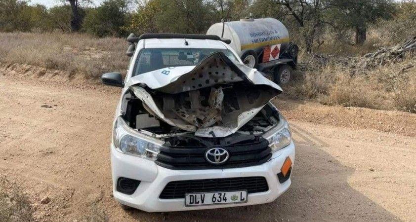 Güney Afrika'da kızgın fil arabayı parçaladı
