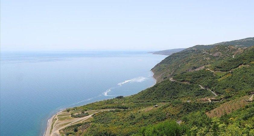WWF'ye göre Akdeniz'deki deniz suyu dünya ortalamasından yüzde 20 daha hızlı ısınıyor