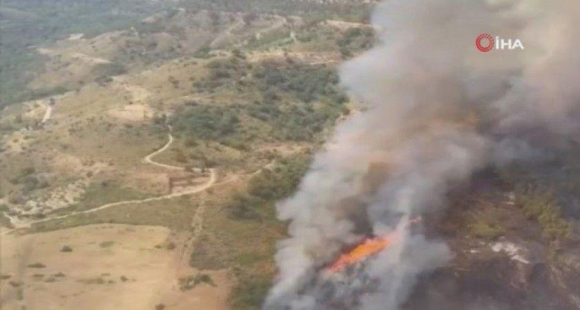 İtalya'da orman yangınları ile mücadele sürüyor