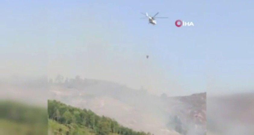 Azerbaycan'ın Gebele kentinde çıkan orman yangını kontrol altında