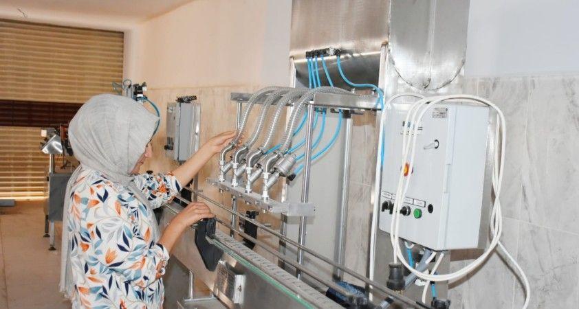 Dargeçit'te 'üzüm işleme tesisi' projesinde sona yaklaşılıyor