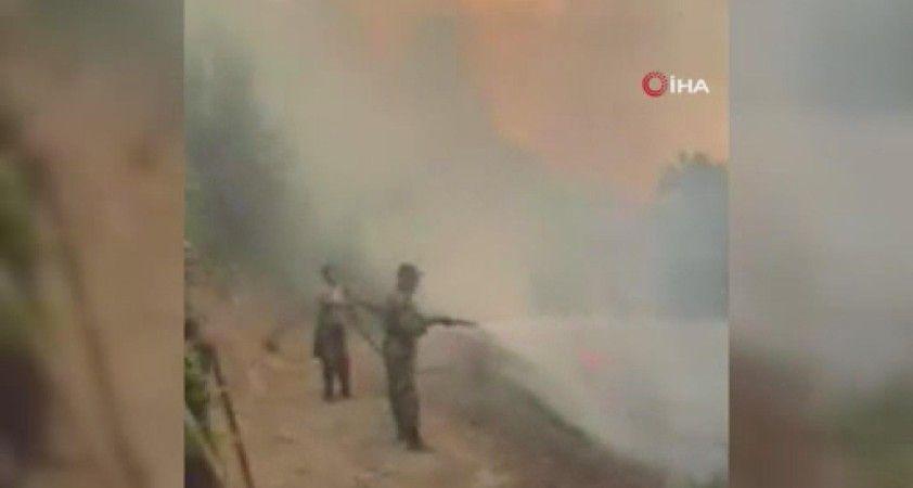 Azerbaycan'da orman yangını