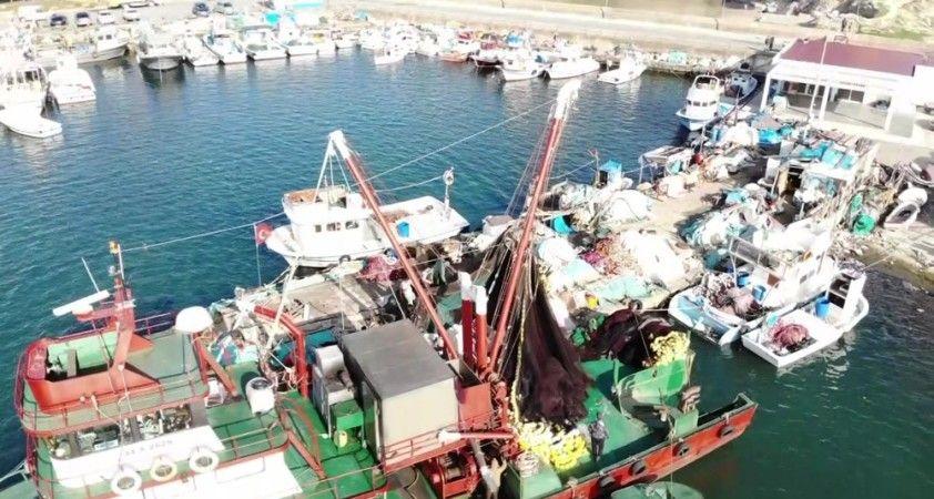 Balıkçı tekneleriyle dolan Şile Limanı havadan görüntülendi