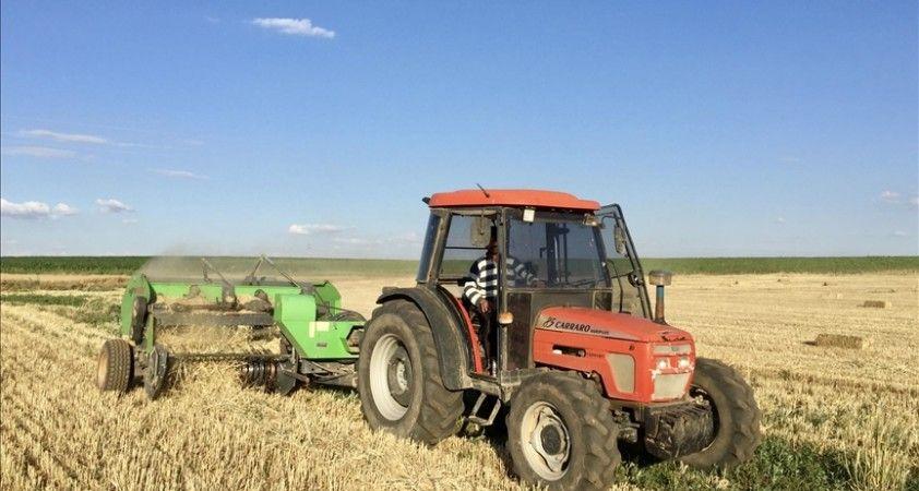 Tahıl ve sebzede bu yıl üretimin azalacağı, meyvede artacağı tahmin edildi