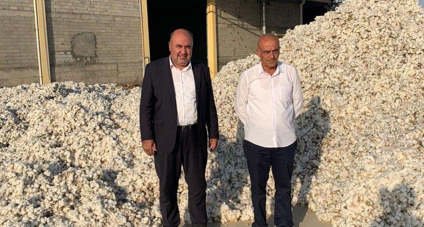 Diyarbakır'da 'beyaz altın' hasadına başlandı