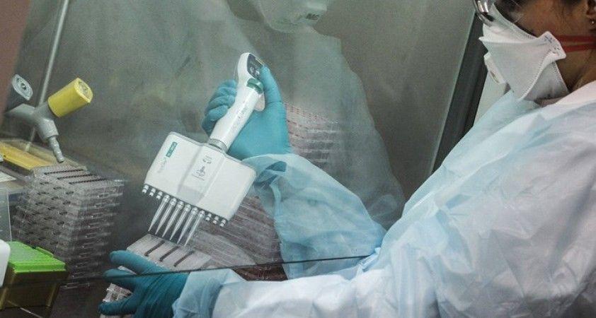 Putin'den aşı müjdesi