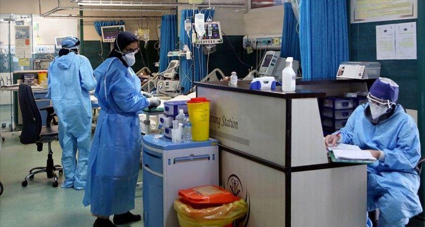 Dünya genelinde Kovid-19'dan iyileşenlerin sayısı 31 milyonu geçti